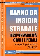 DANNO DA INSIDIA STRADALE - responsabilit� civile e penale